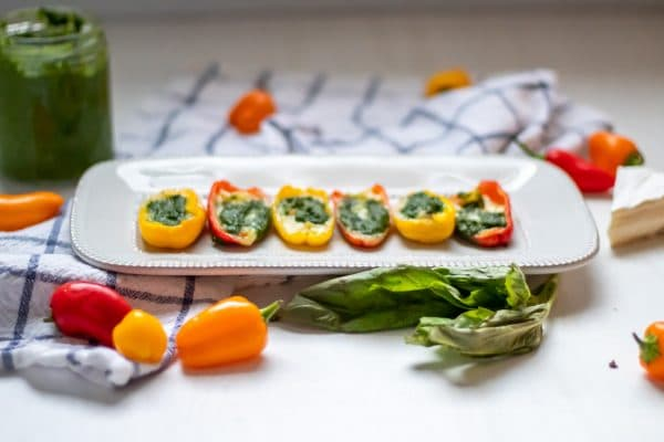 Horizontal picture of brie and pesto stuffed mini peppers on a white rectangular plate flanked by a jar of pesto, fresh basil, and fresh mini bell peppers.