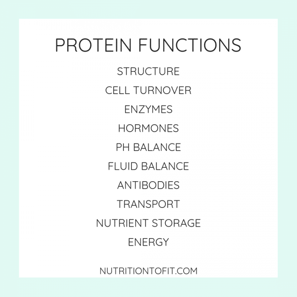 "Square image with blue border with text that says, ""Protein Functions: Structure, Cell Turnover, Enzymes, Hormones, pH Balance, Fluid Balance, Antibodies, Transport, Nutrient Storage, Energy"""