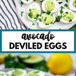 "avocado deviled eggs with text ""avocado deviled eggs"""