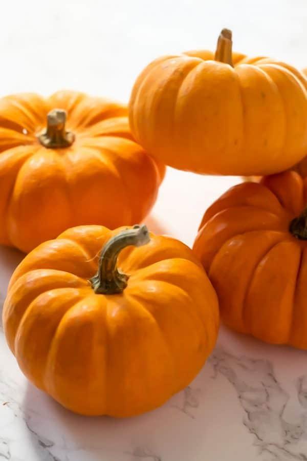 a pile of mini pumpkins
